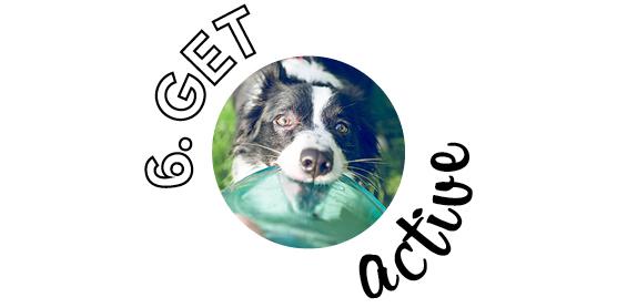 6. Get active