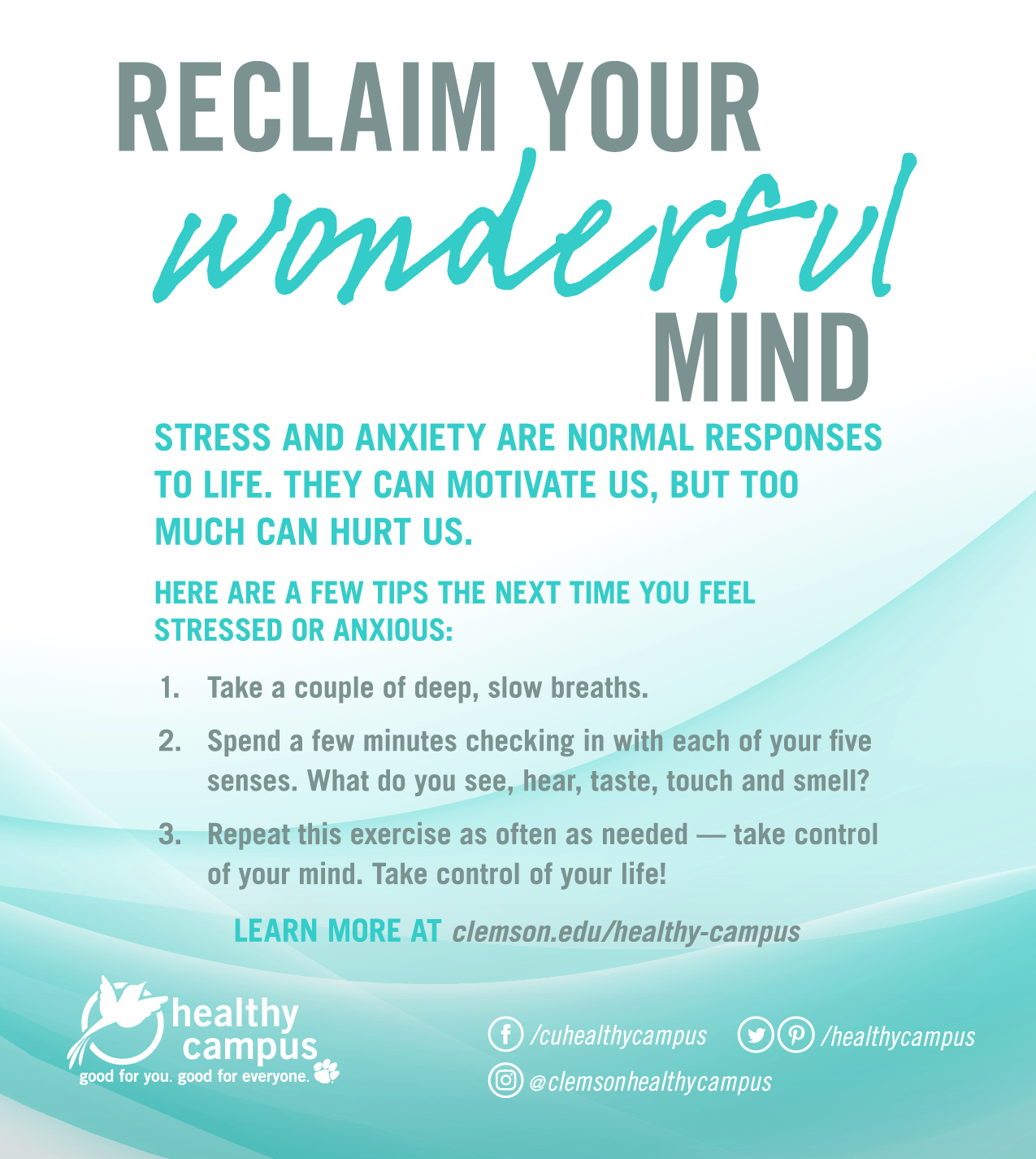 Reclaim Your Wonderful Mind