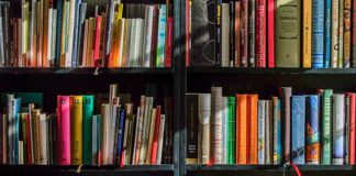 Books To Read in November From Sherrod Library