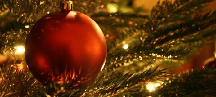Christmas bulb on tree
