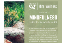 Mindfulness Lunch and Learn