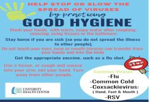 Stop or Slow the Spread of Viruses--- Practice good hygiene