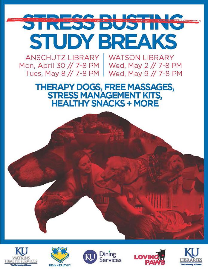 Stress Busting Study Breaks