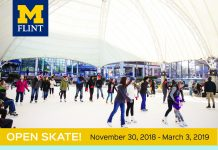 Open Skate at UPAV Ice Rink