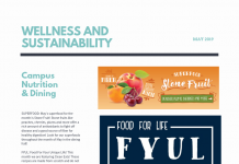 wellness and sustainability