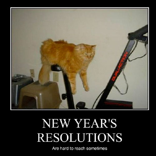 New Years Resolutions are hard to reach sometimes