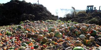 Food Loss & Waste: What's the big deal?