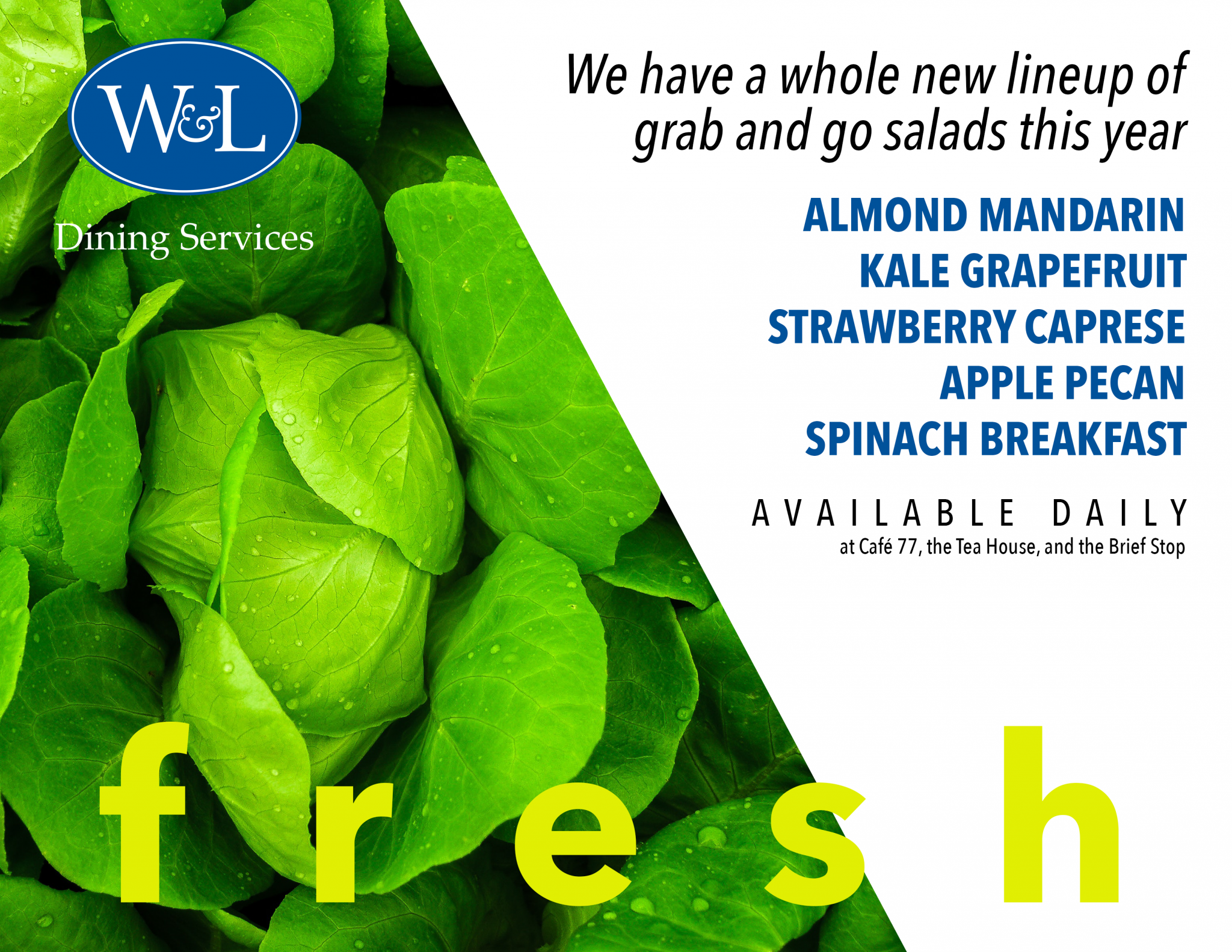Get healthy with fresh salads!