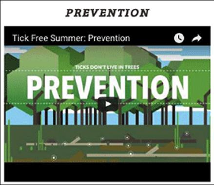 Prevention <p data-wpview-marker=