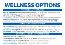 Wellness Options