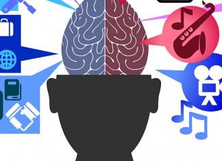 vector image of brain