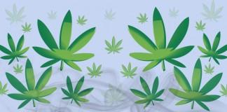 Marijuana banner