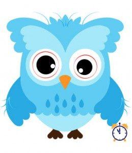 wrecked night owl