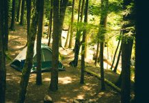 People camping in a green tent