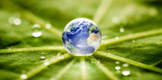 Earth in a water droplet on a leaf