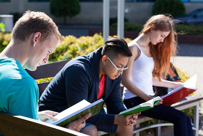 Group of students studying outside
