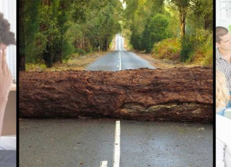 Tree trunk laying across road / two photos of people in distress