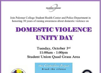 DOMESTIC VIOLENCE UNITY DAY