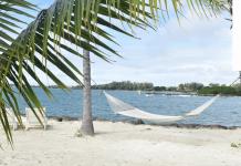 hammock on a sunny beach