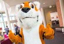 Leeroy the Tiger, YU Mascot