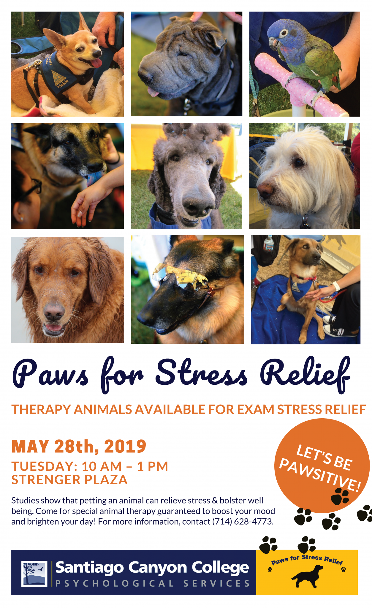Paws for Stress Relief Poster Event Details