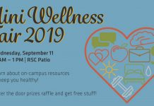 Mini Wellness Fair 2019