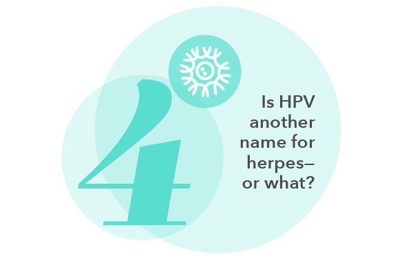 Is HPV another name for herpes- or what?