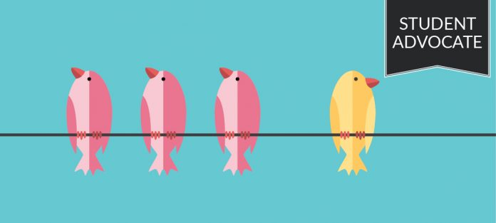 student advocate: three pink birds and one yellow bird