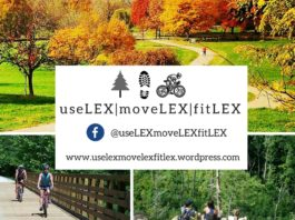 useLEX moveLEX fitLEX