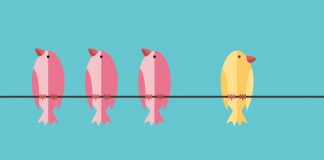 Three pink birds and 1 yellow bird