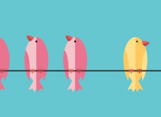 Three pink birds and one yellow bird