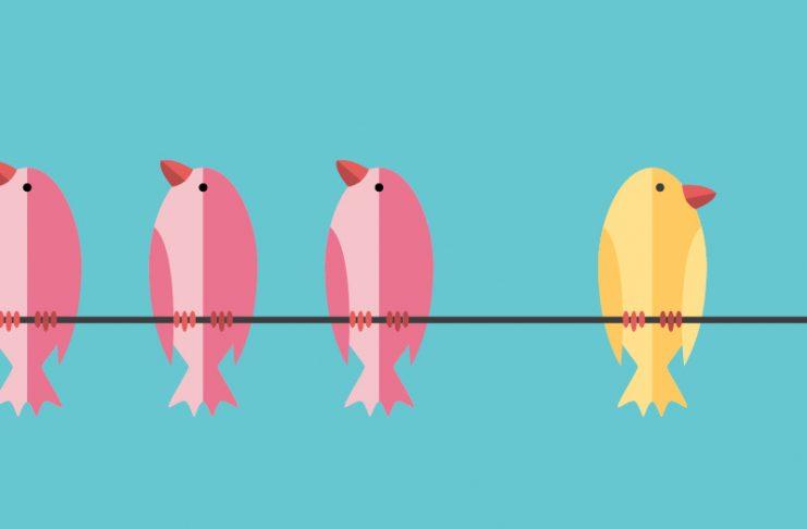 3 pink birds and 1 yellow bird