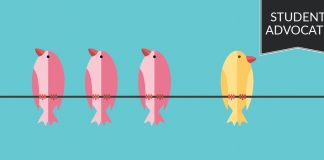 Student advocate- 3 pink birds and 1 yellow bird