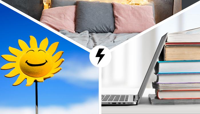 collage of images: pillows, happy sunflower, and laptop with books