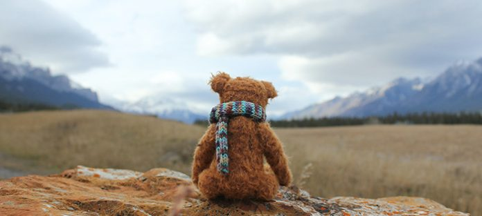 teddy bear looking at mountains   self compassion meditation