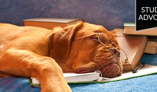 Student advocate: dog sleeping on books