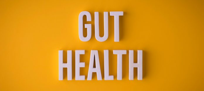 Your Second Brain How Your Gut Affects Your Mental Health Hudson