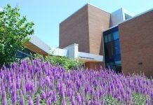 Niagara College campus Applied Health wing